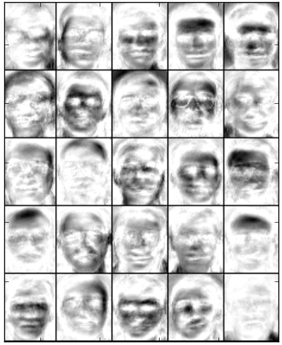 Basis images of LSNMF obtained after 200 iterations on reduced face images.